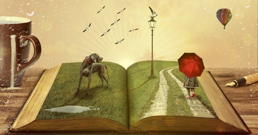 kitap-book-life