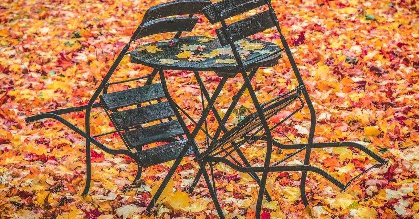 autumn-sonbahar-eylül-leaves-chairs